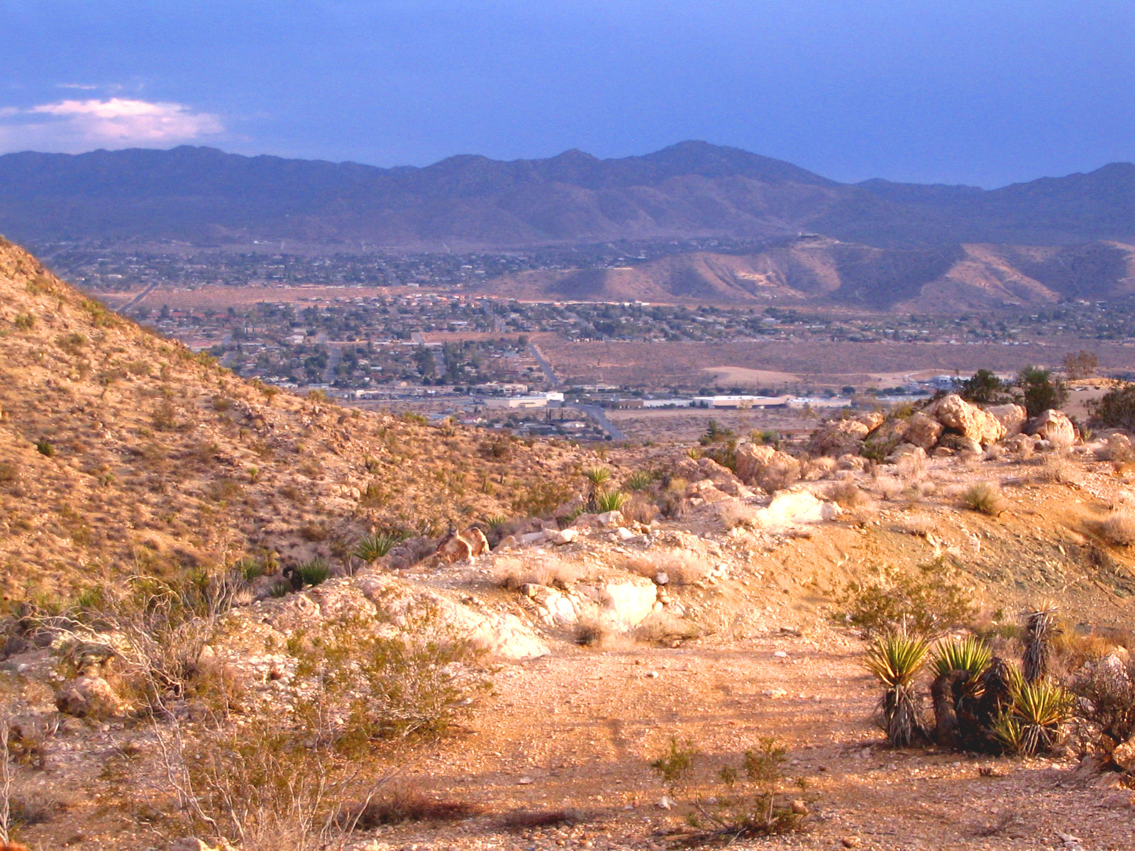 Stunning Views of Joshua Tree from this parcel.