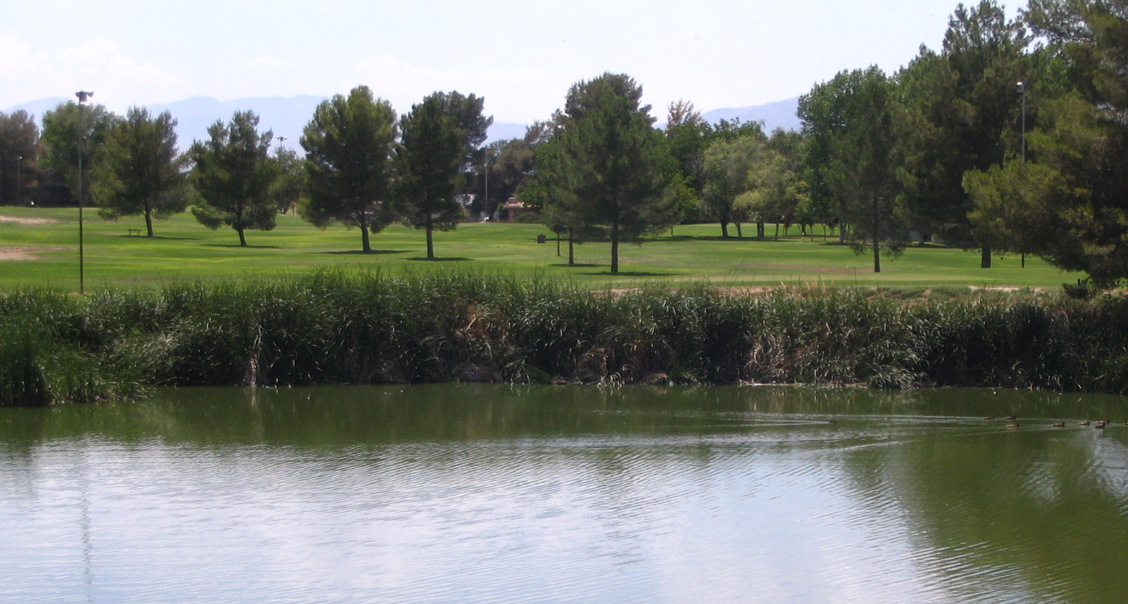 Golfing in California City